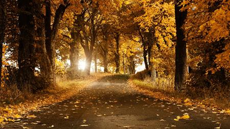 تصاویر زیبای فصل پاییز, پوستر فصل پاییز