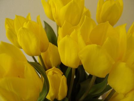عکس گل , دسته گل عروس