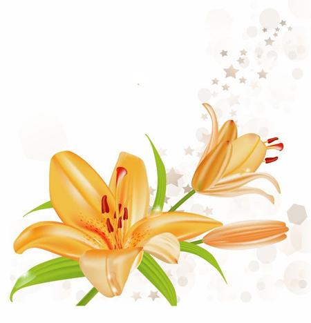 تزیین کارت پستال با گل, کارت پستال های دست ساز با گل