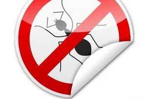 سم های مورچه,از بین بردن ایمیل, خلاصی از مورچه, خانه داری, مورچهها, از بین بردن, از بین بردن مورچه, از بین بردن مورچهها, کشتن مورچه, مهارتهای زندگی, حشرات موذی,