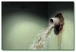 چگونه بوی فاضلاب منزل مان را از بین ببریم ؟
