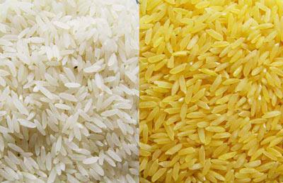 راهنمای خرید برنج مرغوب, نکاتی برای خرید برنج خوب