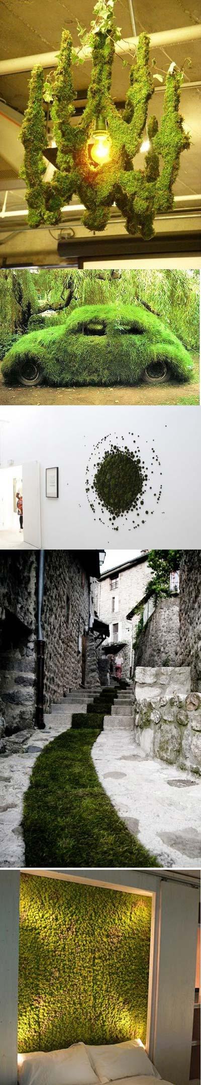 آشنایی با خزه گرافیتی , نحوه درست کردن خزه های گرافیتی