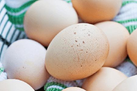 ضد عفونی کردن تخم مرغ,ضدعفونی تخم مرغ