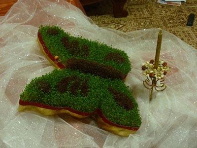 درست سبزه دانه سبزه هفت سین شیک - سری دوم