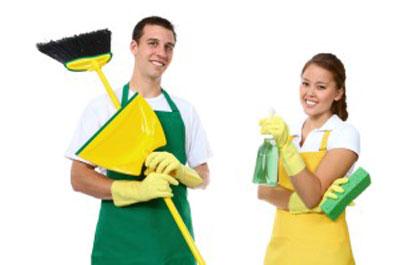 تمیز کردن خانه, ریزه کاری تمیز کردن خانه