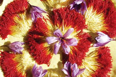نحوه تشخیص زعفران تقلبی , راههای خالص بودن زعفران