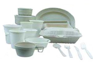تاثیر ظروف یک بار مصرف بر غذا