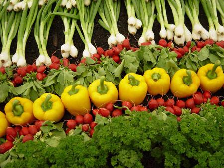 راهنمای شستن سبزی,بهترین روش نگهداری سبزی