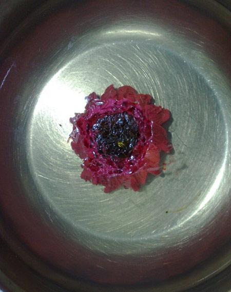 آموزش تصویری درست کردن ژله تزریقی به شکل گل