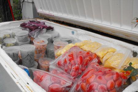 نحوه بسته بندی کردن مواد غذایی,اصول انجماد مواد غذایی