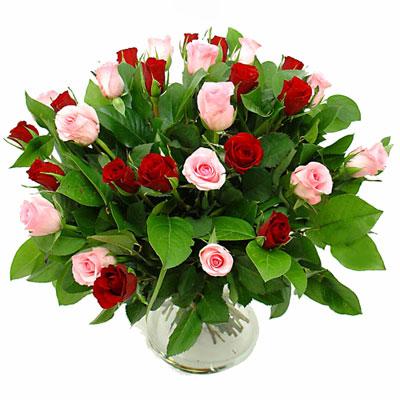 راهنمای خرید گل و گلدان, راهنمای نگهداری گلدان
