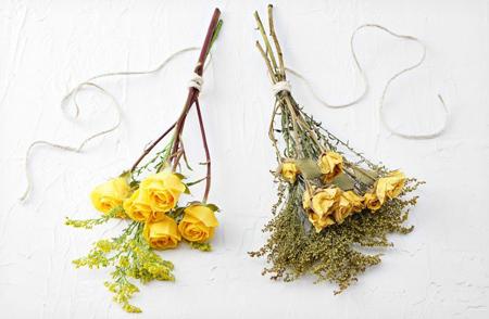 خشک کردن انواع گل های طبیعی, مراحل خشک کردن گل های طبیعی