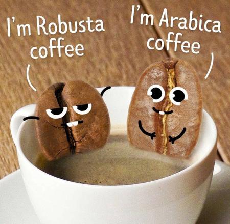 راهنمای خرید قهوه, اشتباهاتی برای تهیه قهوه