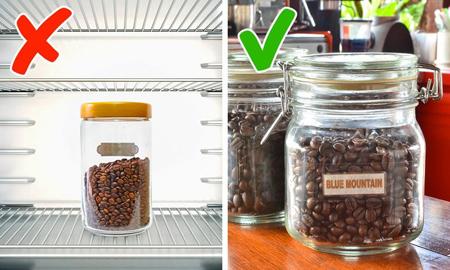 انواع دانه های قهوه, راهنمای خرید قهوه
