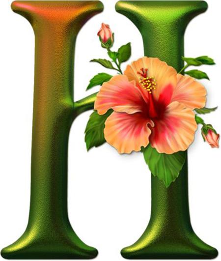 تصویرهای حروف H, طراحی حرف H