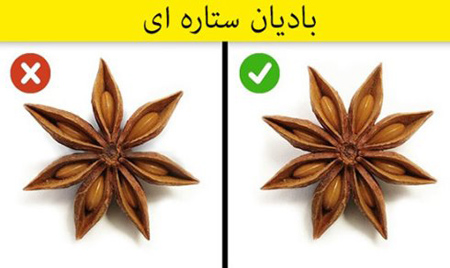 [تصویر:  spice1-detection6.jpg]