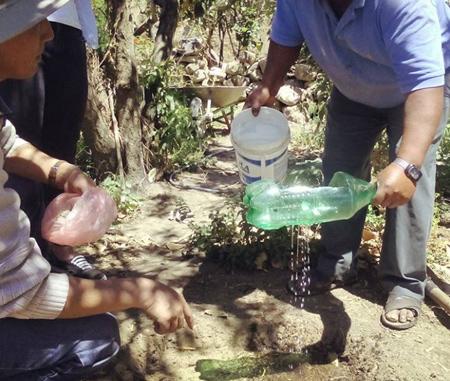 مهارت های استفاده از بطری های آب, کاربردهای جالب بطری های پلاستیکی