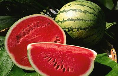 شیوه نگهداری از هندوانه,مکان نگهداری از هندوانه