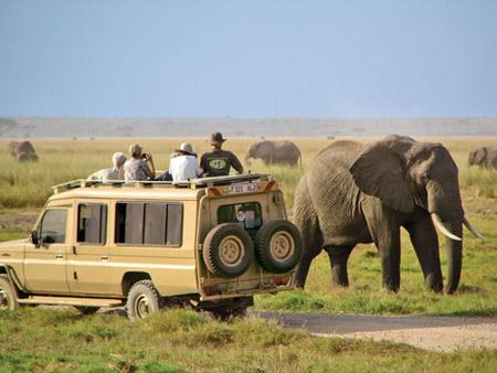 کنیا,کشور کنیا,پارک ملی ابردیر