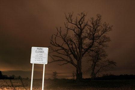 درخت شیطان,داستان درخت شیطان,عکس های درخت شیطان
