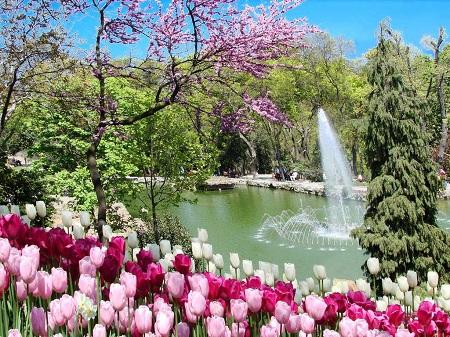 زمان مناسب برای بازدید از پارک امیرگان, عکس های پارک امیرگان, پارک امیرگان کجاست