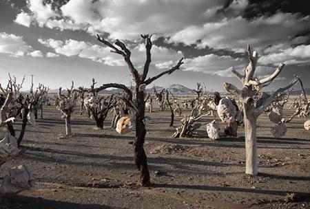 ترسناک ترین مناطق ایران,وحشتناک ترین مناطق گردشگری ایران,عجیب ترین مناطق گردشگری
