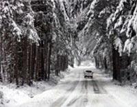 سفر,مسافرت در زمستان,رانندگی در هنگام مه گرفتگی