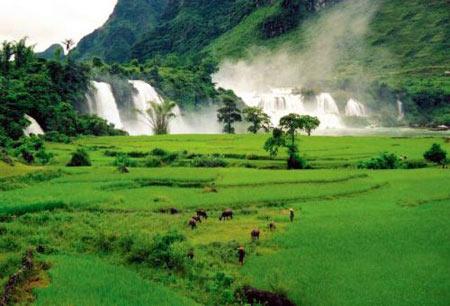 آبشار,زیباترین آبشارهای جهان,تصاویر آبشار بن جیوک
