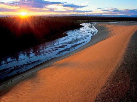 پارک ملی کوبوک, ای طبیعی,جنگل های سردسیر آلاسکا