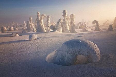 تصاویری از جنگل یخ زده در فنلاند معروف به زادگاه بابانوئل
