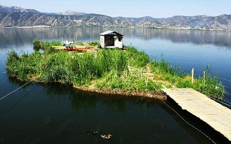 دریاچه,دریاچه زریوار,ع های دریاچه زریوار