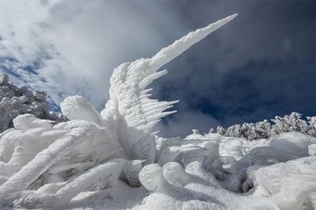 مجسمه,مجسمه های یخی,عجایب طبیعی