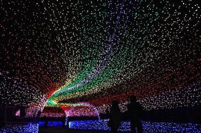 تونل روشنایی,ع هایی از تونل روشنایی در ژاپن,باغ ناباناساتو