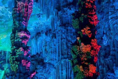 غار, غار رید فلوت, زیباترین غارهای جهان