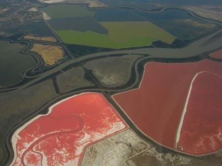 استخرهای رنگارنگ نمک,دیدنی های خلیج سان فرانسیسکو,تصاویر فرآیند تولید نمک