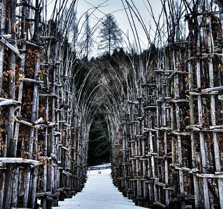 مکانهای دیدنی ایتالیا,کلیسای درختی در ایتالیا,کلیساهای عجیب و غریب