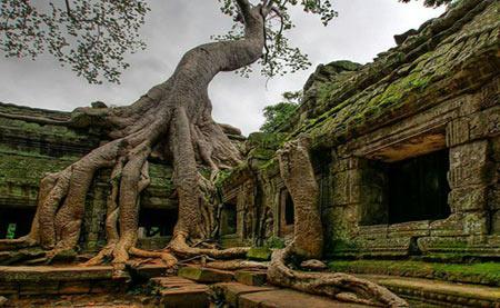 کامبوج,انگکور وات,معبد انگکور وات در کامبوج