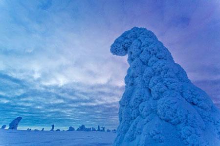 پارک ملی ریسیتونتوری در فنلاند,تصاویر پارک ملی فنلاند در زمستان