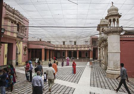 معبد,معبد موش در هندوستان,دیدنی های هندوستان