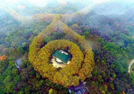 کاخ, کاخ زمردی در چین, کاخی شبیه گردنبد زمرد در چین