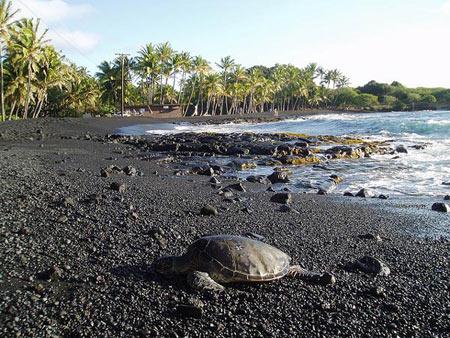 پونالو ساحل شن های سیاه,عجایب طبیعت,ساحل سیاهرنگ پونالو