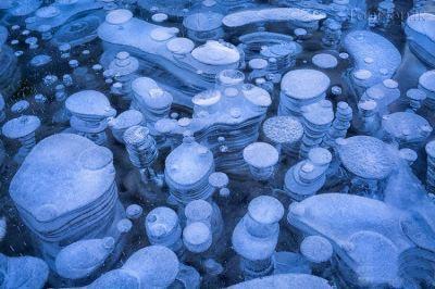 دریاچه abraham,کوه ها راکی کانادا,حباب های منجمد هوا در دریاچه abraham,عجایب گردشگری