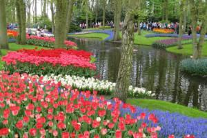 7 باغ حیرت انگیز از سراسر دنیا +عکس
