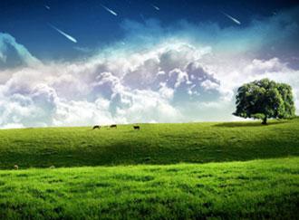 طبیعت گردی,سفر به طبیعت