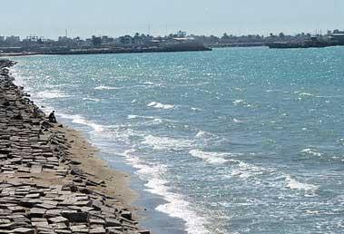 بوشهر,ساحل بوشهر