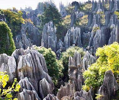 جاذبه های طبیعی جهان,گردشگری
