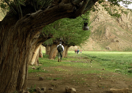 دشت هویج, جاذبههای روستای افجه
