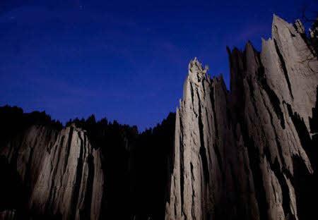 جنگل صخره ای  مکانی شگفتانگیز در ماداگاسکار