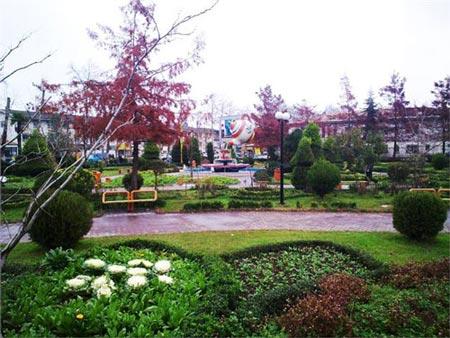 باغ عروسی در گیلان